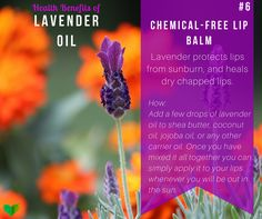 how to make lavender chapstick  - find more uses for #lavender #oil here: http://everyhomeremedy.com/what-is-lavender-oil-good-for/