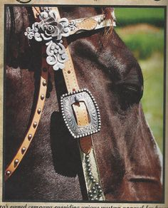beautiful headstall