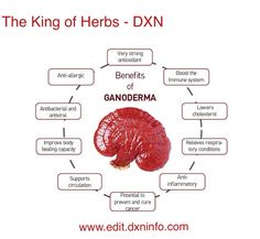 Ganoderma and its main benefits  To find out how to get it, please check out my site!