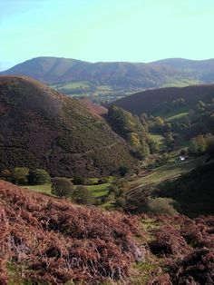 Batch-Valley-the-Long-Mynd1.jpg 480×640 pixels