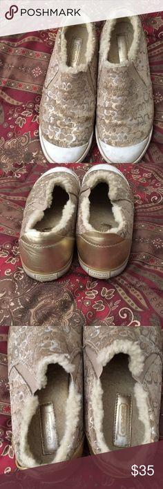 Coach Sneakers Warn a few times Coach Shoes Sneakers