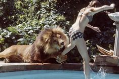 These Photos Of A Teenage Melanie Griffith And Her Pet Lion In The 1970s Are Quite Something