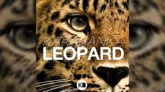 Karabanka - Leopard  Listen to my EDM track  Enjoy.