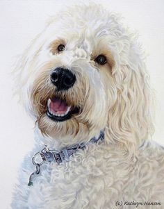 Feta by Kathryn Hansen, Colored Pencil, 10 x 8 Service Dog Training, Service Dogs, Dog Breed Names, Dog Breeds, Organic Dog Food, Dog Grooming Shop, Food Cartoon, Military Dogs, Dog Paintings