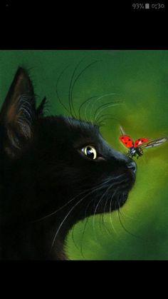 Como dice el titulo esto son memes de miraculous ladybug an chat Noir… #detodo # De Todo # amreading # books # wattpad