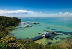 Sorrento 1.5 hour Adventure Cruise SEPT to APR - Oz Tour Guide Oz Tour Guide