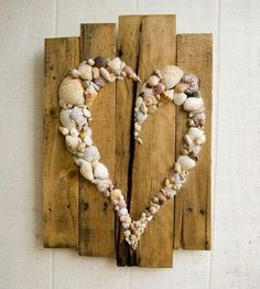 ❤️for the sea shells I have collected through the years