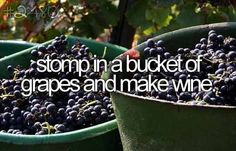 On my bucket list is definitely making wine the old fashioned way! I'd like to own my own vineyard some day too, but that's maybe a bit too far fetched to put on my bucket list.