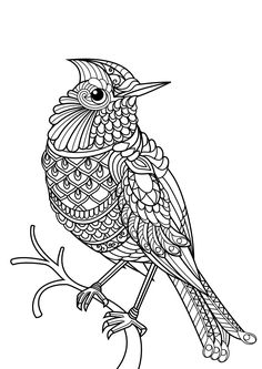 Animal coloring pages pdf Animal Coloring Pages is a free adult coloring book with 20 different animal pictures to color: horse coloring pages, dog, cat, owl, wolf coloring pages and more! Create your own collection of animal coloring pages. Farm Animal Coloring Pages, Easy Coloring Pages, Mandala Coloring Pages, Coloring Pages To Print, Coloring Books, Coloring Sheets, Mandala Art, Mandalas Drawing, Animal Pictures To Color