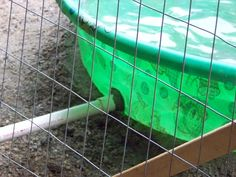 keep the duck house dry? duck pond drainduck pond drainto keep the duck house dry? Backyard Ducks, Backyard Farming, Chickens Backyard, Pet Ducks, Baby Ducks, Raising Ducks, Raising Chickens, Duck Pens, Duck Duck