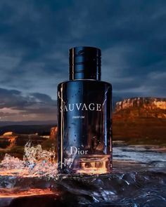 Perfume Dior, Dior Fragrance, Best Perfume, Best Fragrance For Men, Best Fragrances, Dior Homme Cologne, Dior Homme Intense, Men's Aftershave, Perfume Collection