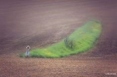 Green by Pier Luigi Saddi on 500px
