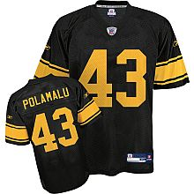 78570902206 20 Best NFL Pittsburgh Steelers Jerseys images