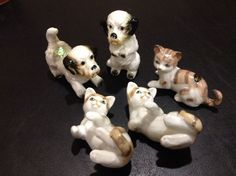 New Vintage BONE CHINA Cat and Dog Set of (6)  made in Taiwan