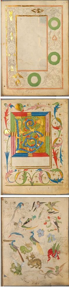 The Illuminated Sketchbook of Stephan Schriber (1494). Selected pages from the Spätgotisches Musterbuch des Stephan Schriber, a manuscript which appears to be some kind of sketchbook, belonging to a 15th century monk working in South-West Germany, where ideas and layouts for illuminated manuscripts were tried out and skills developed.