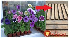 Floral Wreath, Wreaths, Garden, Plants, Monogram, Home Decor, Floral Crown, Garten, Decoration Home