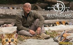 25 Small Changes That Would Make Reality TV Awesome From cracked.com Les Stroud- Survivorman Kitten Island