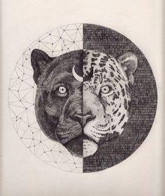Black Jaguar Medicine: What is My Spirit Animal? | In My Sacred Space