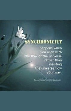 Synchronicity happens when you align with the flow of the universe rather than insisting the universe flow your way.  ▶   - Law of Attraction's effect on like components. ~ Abraham Hicks _____________________________  repinned  by Loving With Joy