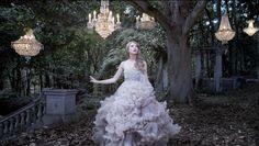 Taylor Swift: Wonderstruck. Digital ad by KraftWorks NYC.