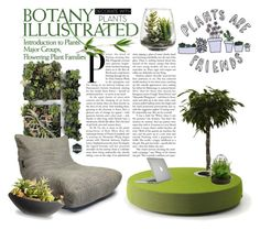 """""""Untitled #437"""" by riell-projecthome ❤ liked on Polyvore featuring interior, interiors, interior design, home, home decor, interior decorating, Speck, National Tree Company, Threshold and Picnic at Ascot"""