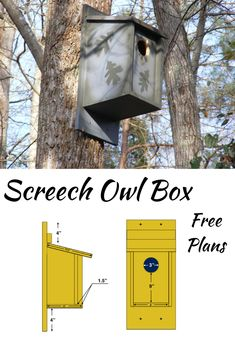This tutorial will show you how to make a screech owl box. I provide free plans and photos that show the steps. If you love attracting and watching birds, this is a great project. It only takes a few tools and can be made over the weekend. Woodworking Projects That Sell, Diy Woodworking, Outdoor Projects, Wood Projects, Owl Box, Screech Owl, Wood Bird, Bird Boxes, Owl House