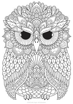 Murphy Owl adult coloring colouring in coloring pages Owl Coloring Pages, Free Adult Coloring Pages, Mandala Coloring Pages, Printable Coloring, Coloring Sheets, Coloring Books, Owl Clip Art, Owl Art, Zentangle