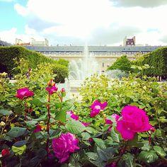 Heaven.  #takemetoparis #takemetoparisapartments #paris #france #europe #park #garden #flowers #blossom #fountain #architecture #beautiful #gorgeous #travel #travelgram #holiday #vacation #wanderlust #topparisphoto @topparisphoto