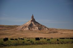 CHIMNEY ROCK - is a prominent geological rock formation in western Nebraska. Rising nearly 300 feet above the surrounding North Platte River valley, the peak of Chimney Rock is 4,226 feet above sea level. It served as a landmark along the Oregon Trail, the California Trail, and the Mormon Trail, which ran along the north side of the rock.