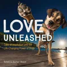 Satisfaction for Insatiable Readers: TLC Book Tours presents... LOVE UNLEASHED by Rebecca Ascher-Walsh
