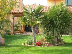 decoracion de jardines con palmeras, http://jardinespequenos.com/decoracion-de-jardines-de-casas/