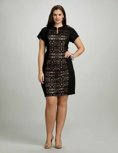 0949a9ef201 at dress barn    lace panel dress in black Curvy Girl Fashion
