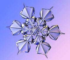 宝石みたい。研究者が数年にわたり記録した雪の結晶たち - グノシー