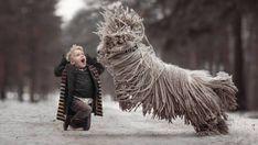 Freundschaft fürs Leben: Große Hunde und ihre kleinen Besitzer | STERN.de