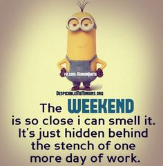 funny pictures minions #funnypictures #uploadfunny
