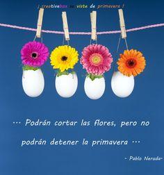 Frases - ''Podrán cortar las flores, pero no podrán detener la Primavera''