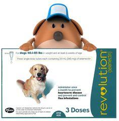 revolution for dogs no prescription