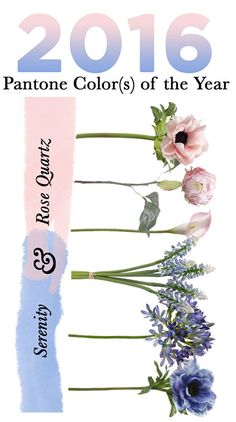 This year Pantone chose the blending of cool and warm in Serenity and Rose Quartz for the 2016 color of the year. Use these two colors in your wedding décor this year to represent your beautiful union. Afloral.com has high-quality silk flowers in Pantones 2016 colors.