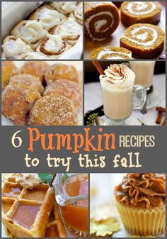 6 fantastic pumpkin recipes to try this fall!  -canarystreetcrafts.com