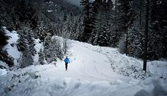 SNOW RUNNING CAROUSEL