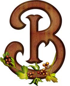 "Photo from album ""Английский алфавит"" on Yandex. B Tattoo, Alphabet Photos, Flower Letters, Monogram Alphabet, Happy Fall Y'all, Letter B, Wood Design, Views Album, Fonts"