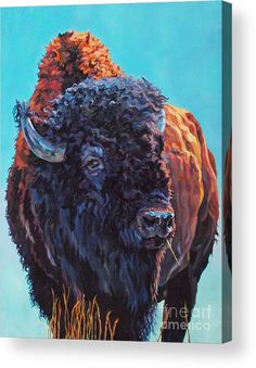 """Patricia A. Griffin Visual Artist- Colorful Contemporary Wildlife Art Bison Buffalo Painting """"Ted"""" by Contemporary Animal Artist Patricia A."""