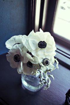 white anemones.