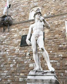 E quando in Palazzo Vecchio, bello come un'agave di pietra, salii i gradini consunti, attraversai le antiche stanze, e uscì a ricevermi un operaio, capo della città, del vecchio fiume, delle case tagliate come in pietra di luna, io non me ne...