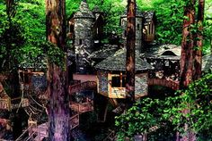Tree house living anyone? Dan Parks can design your landscaped tree house design - http://www.danparksf-l.com