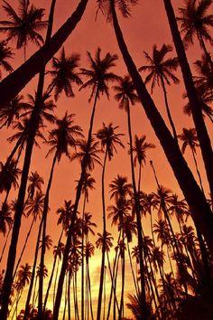 "ponderation: ""Sunrise by Steffen Binke """