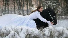 Beautiful horse with a Beautiful woman