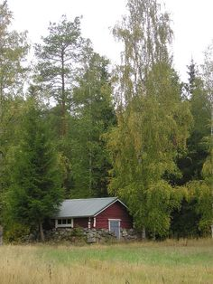 Alahärmä, Finland ~ My great-great-grandfather was from here.