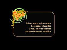 Amália Rodrigues - Libertação - YouTube