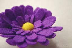 daisy-flower-7.jpg (640×427)